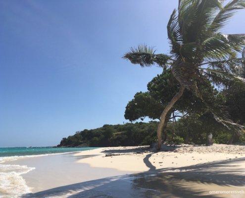 vacanze in barca a vela ai caraibi con skipper spiaggia a tobago
